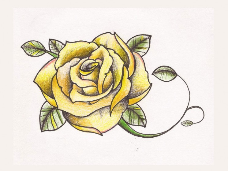 Pistol And Rose Tattoos Sketch