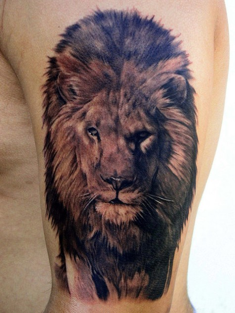 Realistic Lion Head Tattoo On Upper Arm
