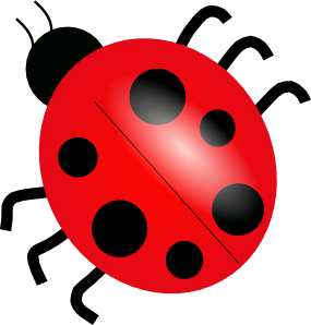 Red Ladybug Insect Tattoo