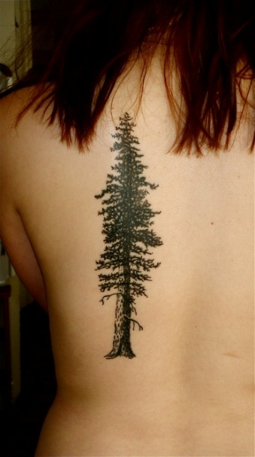 Redwood Tree Tattoo For Girls Back
