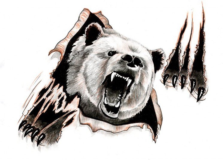 Roaring Bear Face Tattoo With Paw Prints
