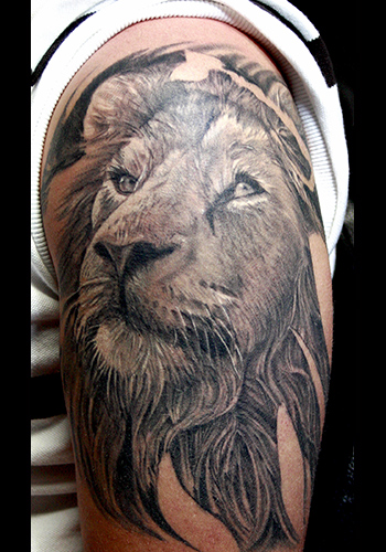 Roaring Lion Tattoo Designs On Shoulders