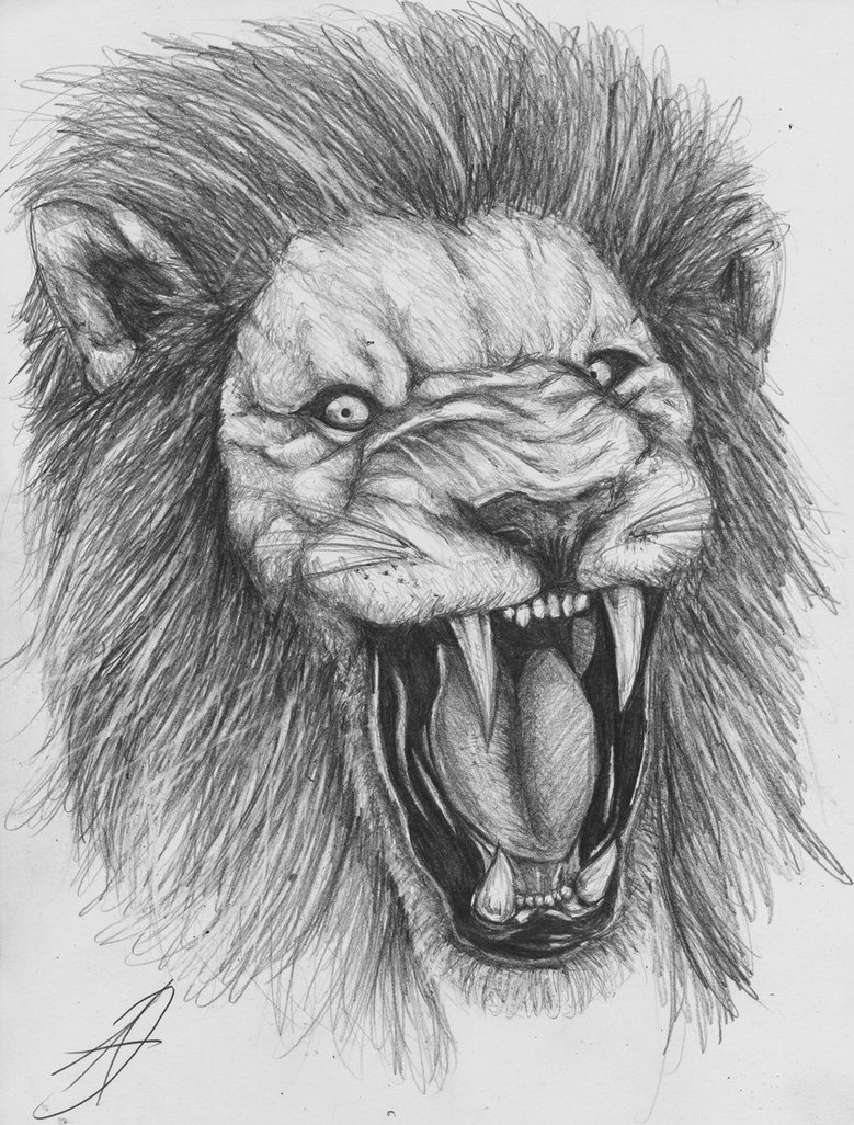 Roaring Lion Tattoo Sketch Photo 6 2017 Real Photo Pictures