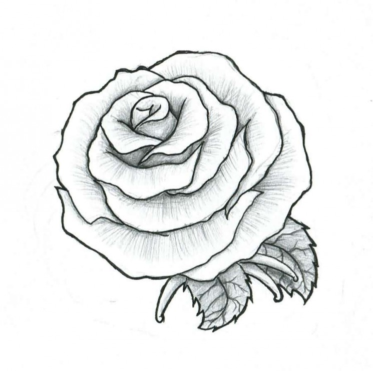 Rose Maybe A Fit Tattoo