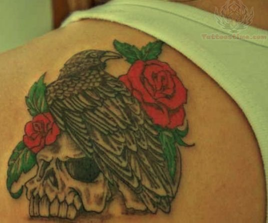 Roses Skull And Crow Tattoos On Back Shoulder