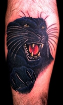 Shining Panther And Flames Tattoos On Half Sleeve