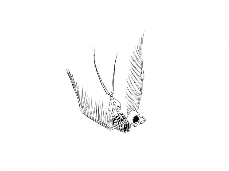 Skeleton Of Falling Down Swallow Tattoo Design