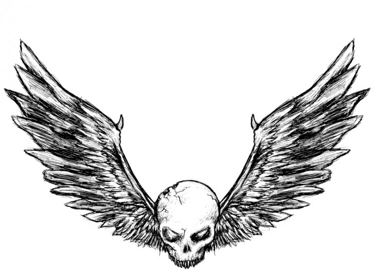 Skull With Angel Wings Tattoo Sketch