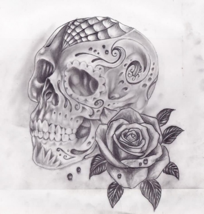 Spider Web Skull And Rose Tattoo Sketch