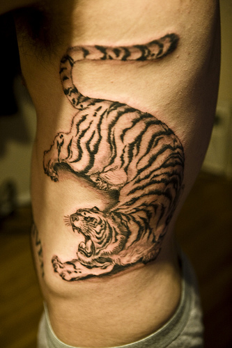 Standing Angry Lion Tattoo On Rib Side