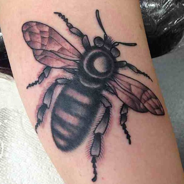 Superb Bee Tattoo Picture
