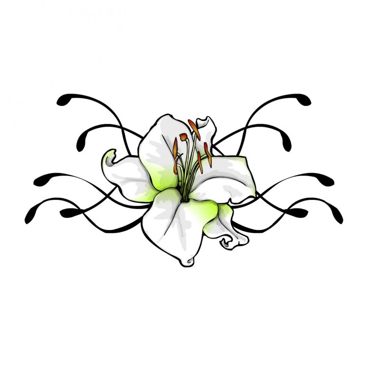 Tattoo Design Of Lily Flower