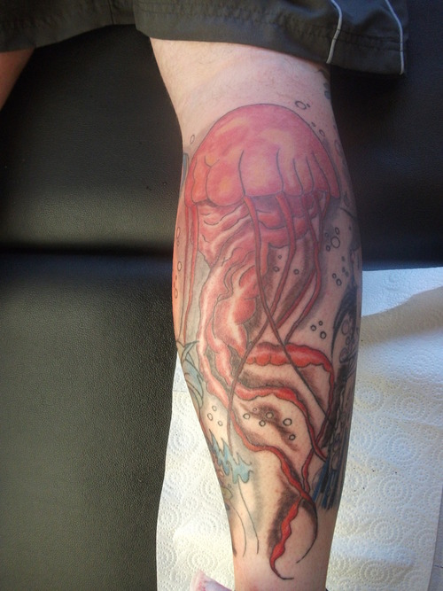 Terrific Jelly Fish Tattoo