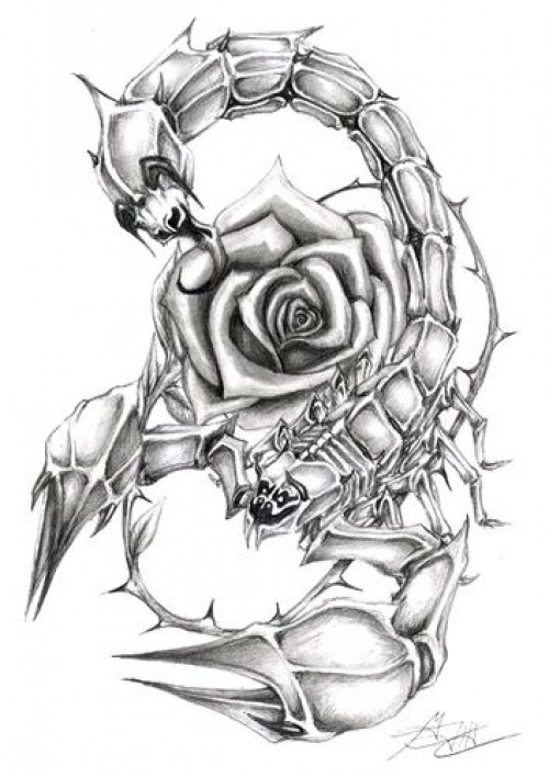 The Scorpion And The Rose Tattoo Design