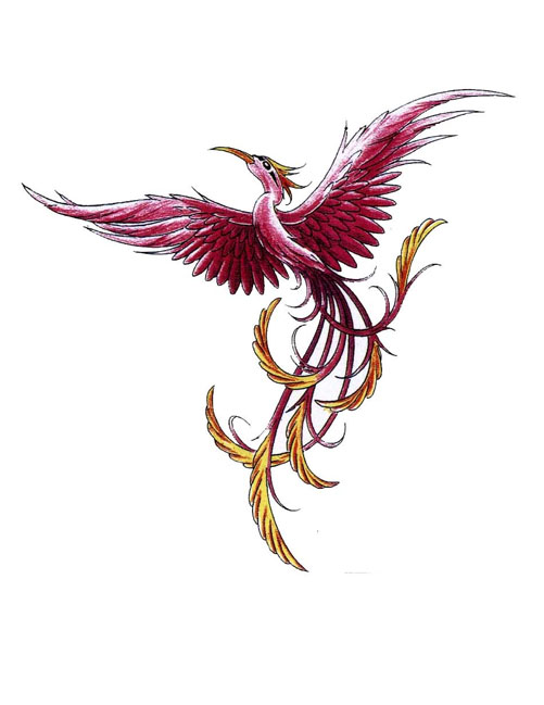 Thin Phoenix With Long Tail Tattoo Design