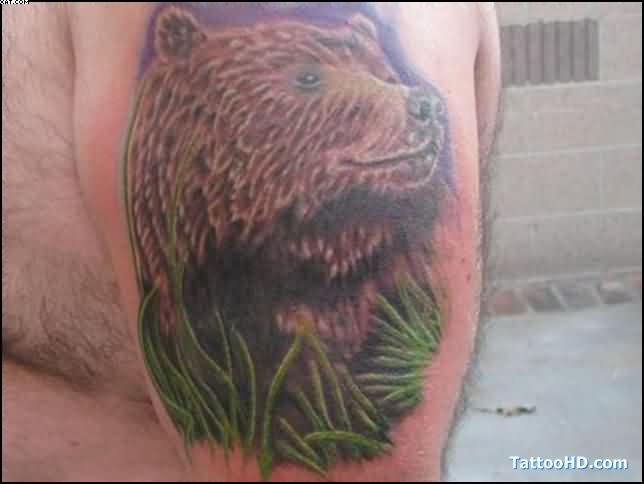 Traditional California Bear Tattoo On Muscles