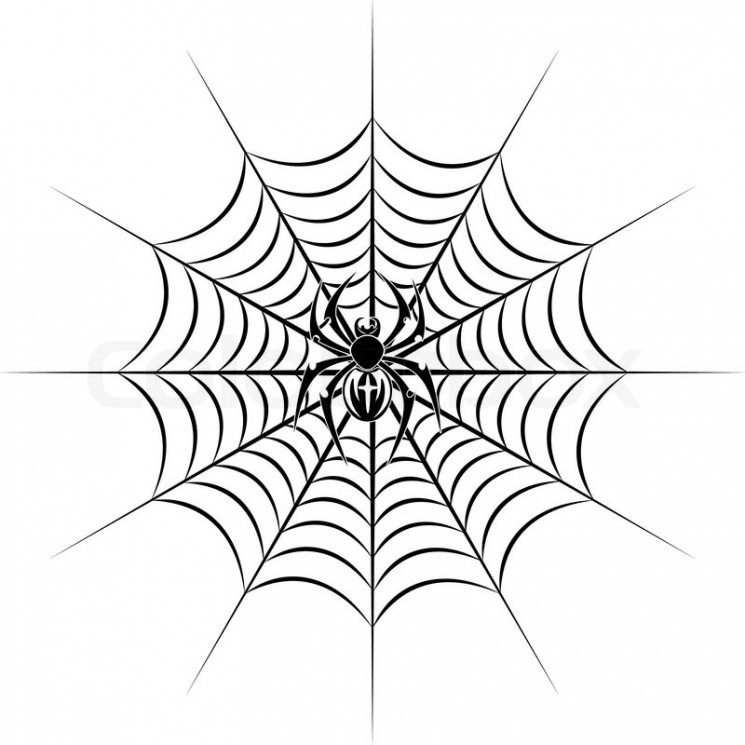 Tri Color Spider Tattoo On Outer Ankle