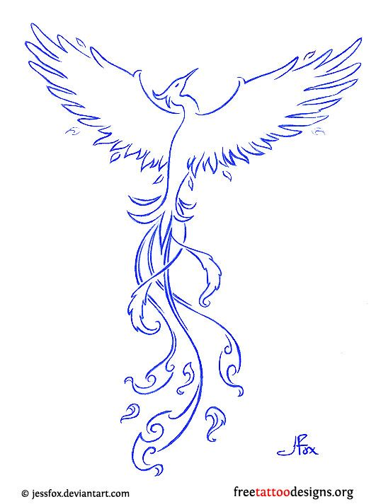 Tribal Phoenix And Blue Outline Tattoo Design