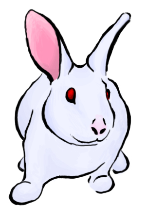 Try A Latest Rabbit Tattoo Design