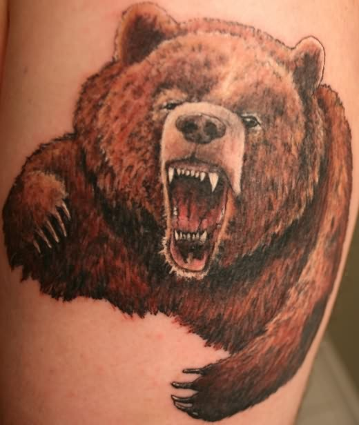 Roaring Bear Face  & Man Face Tattoo Design