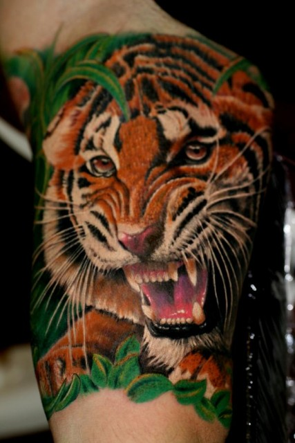 Very Angry Tiger Tattoo On Muscles