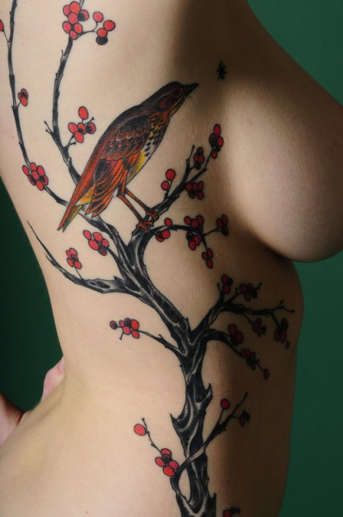 Watercolor Feather Into Bird Tattoos On Arm