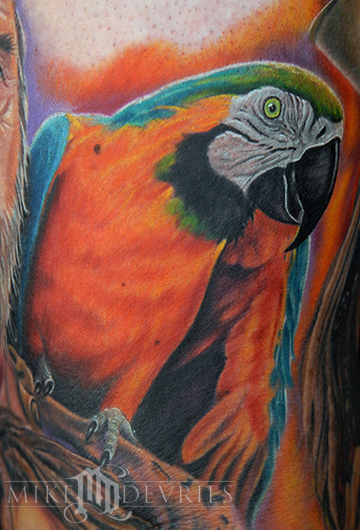 Wildlife Animal Tattoos