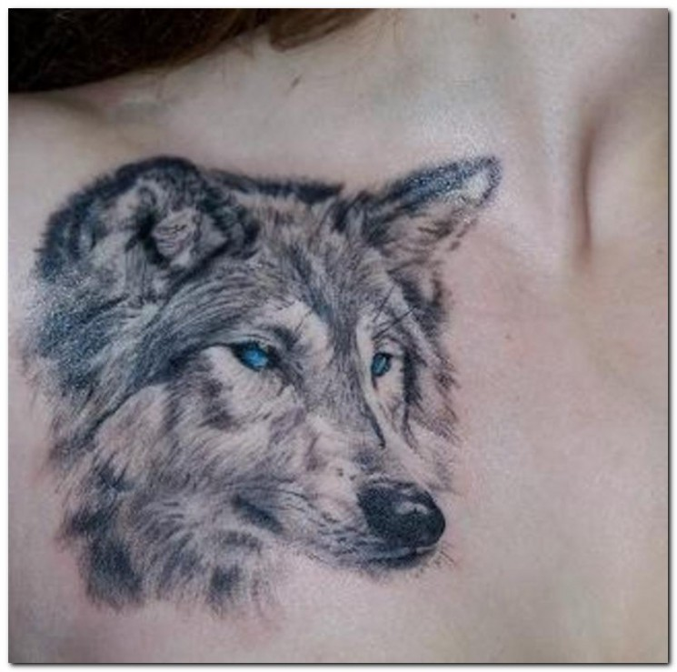Wolf With Different Eyes Tattoo On Biceps