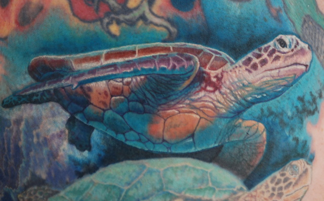 Again Turtle Tattoo Drawing photo - 1