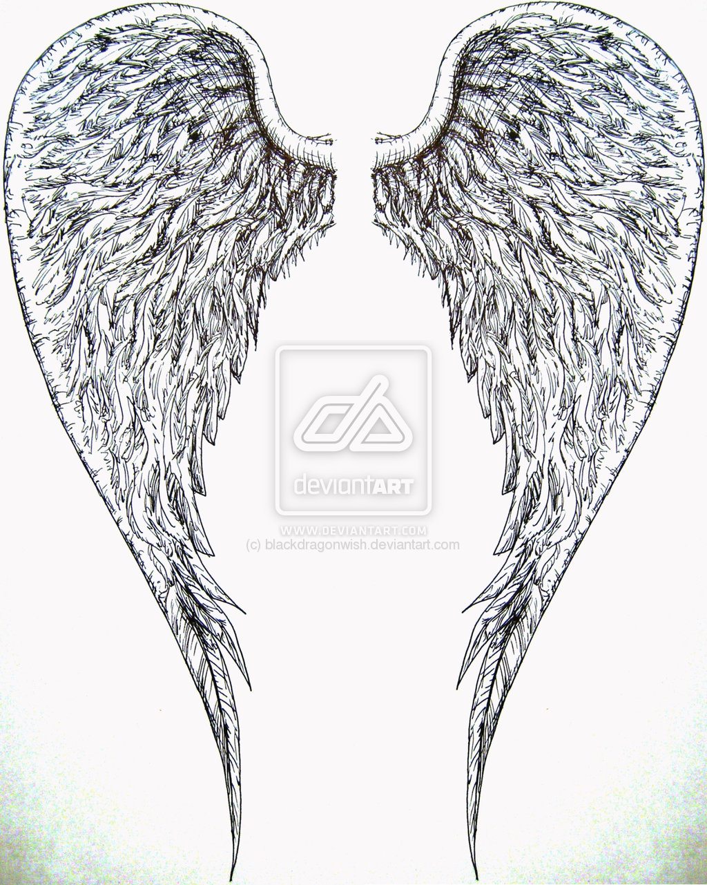 Angel Wings Tattoo On Arm photo - 3