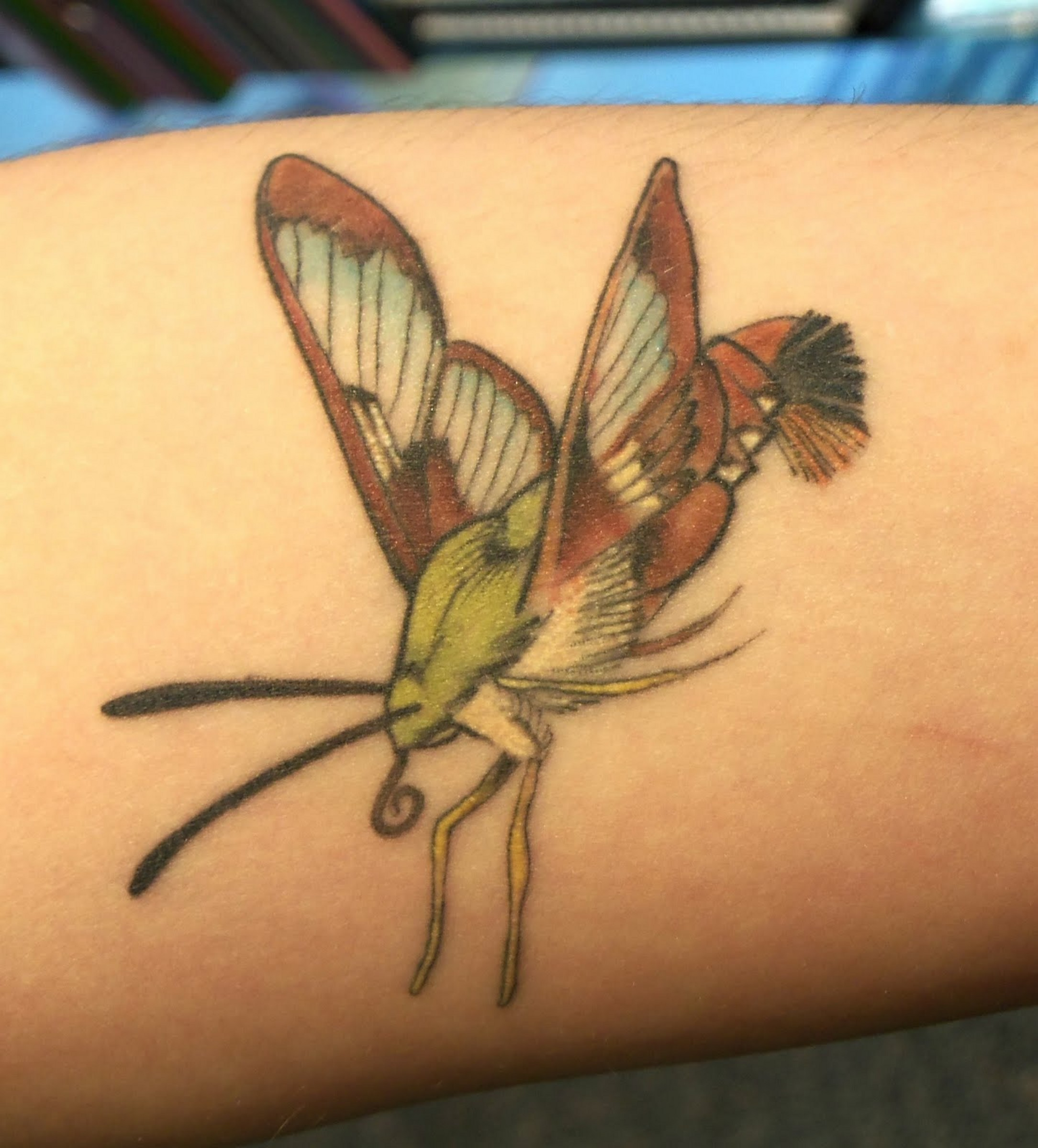 Awesome Butterfly Tattoo Insect Design photo - 1