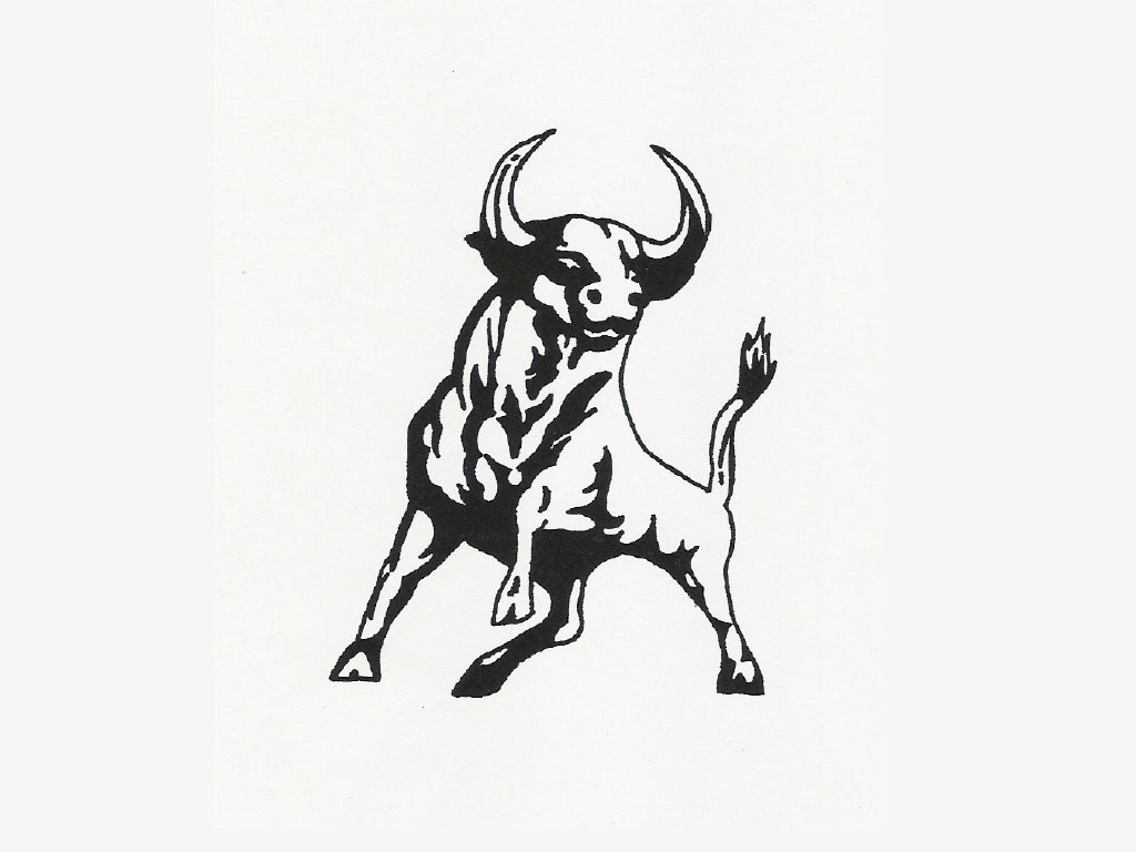 Best Tribal Bull Tattoo photo - 2