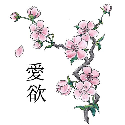 Cherry Blossom With Chinese Letters Tattoo On Back photo - 1