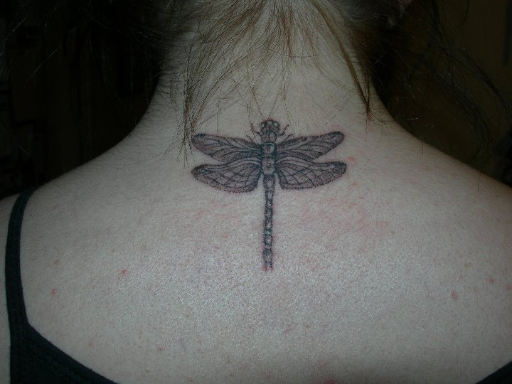 Dragon Fly Bug Tattoo photo - 1