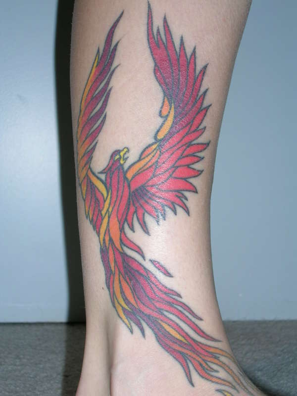 Flaming Phoenix Tattoo Image photo - 2