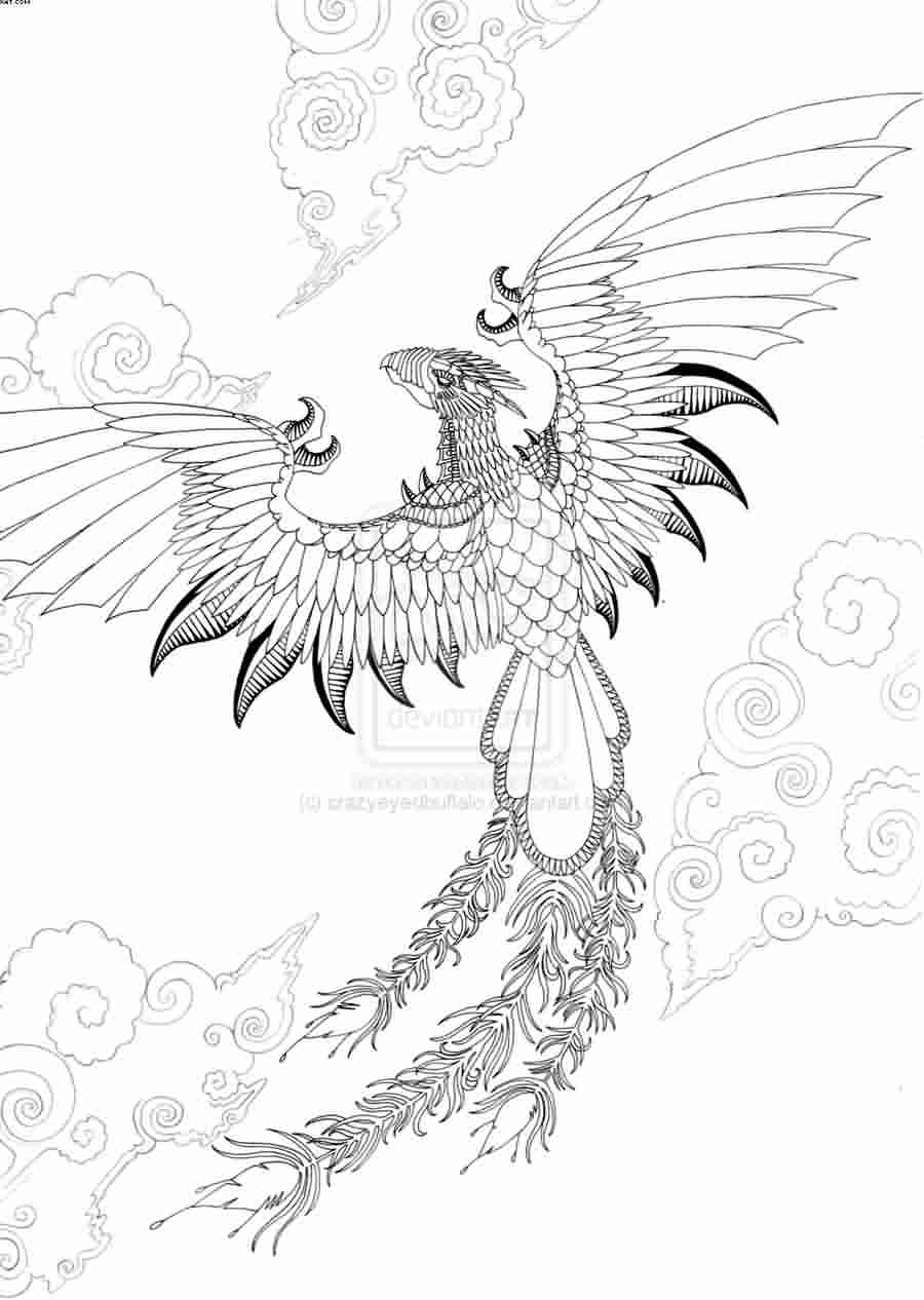 Flying Phoenix Outline Tattoo Design photo - 1