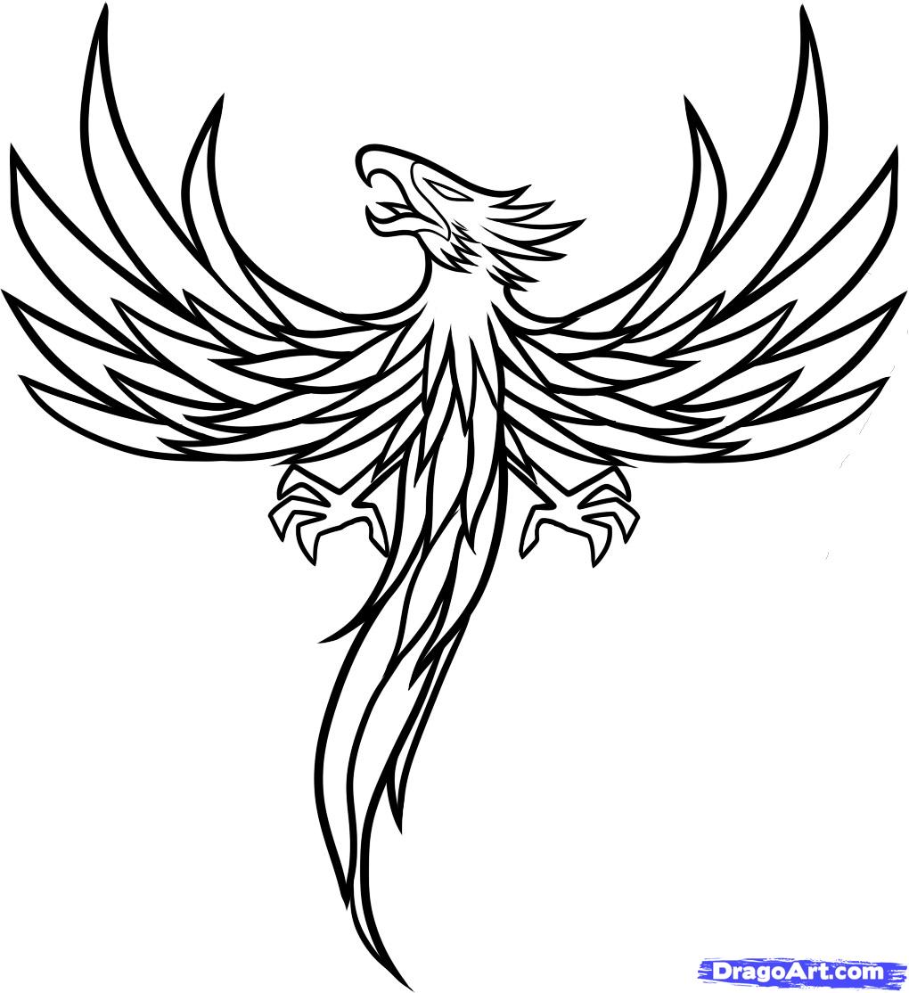 Flying Phoenix Outline Tattoo Design photo - 2