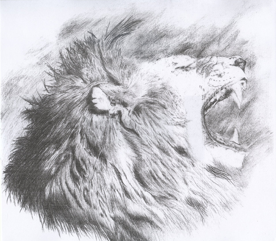 Grey Ink Lion Roaring Face Tattoo photo - 1
