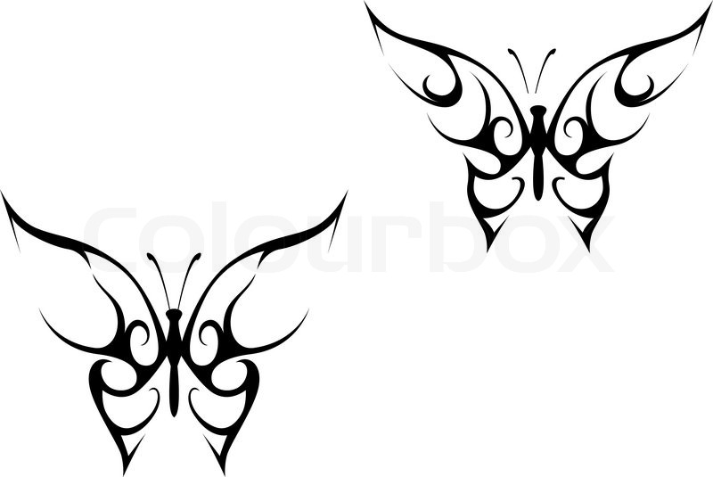 Isolated Butterfly Tattoo In Tribal Style On White Background photo - 2