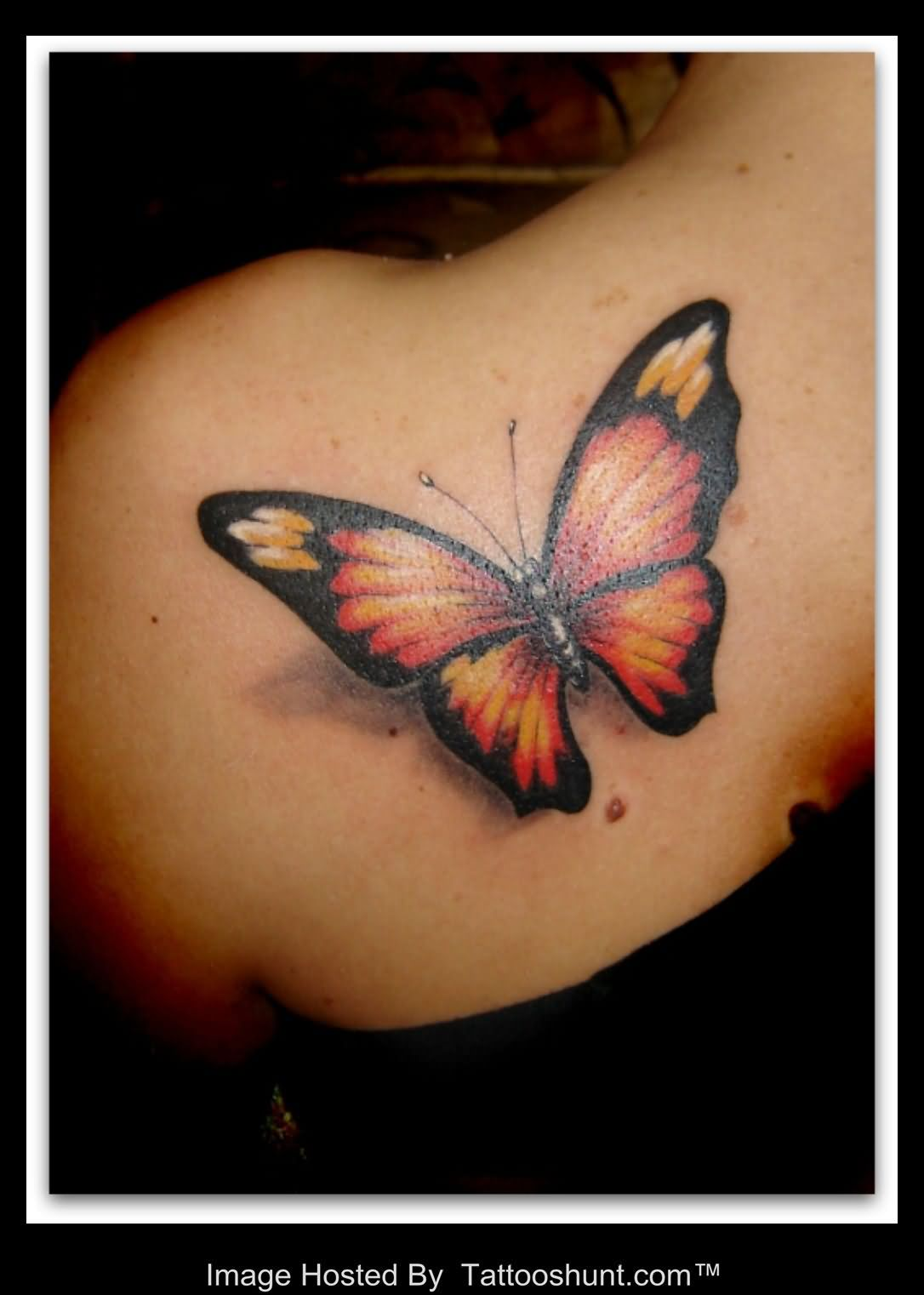Left Back Shoulder 3D Butterfly Tattoo photo - 3
