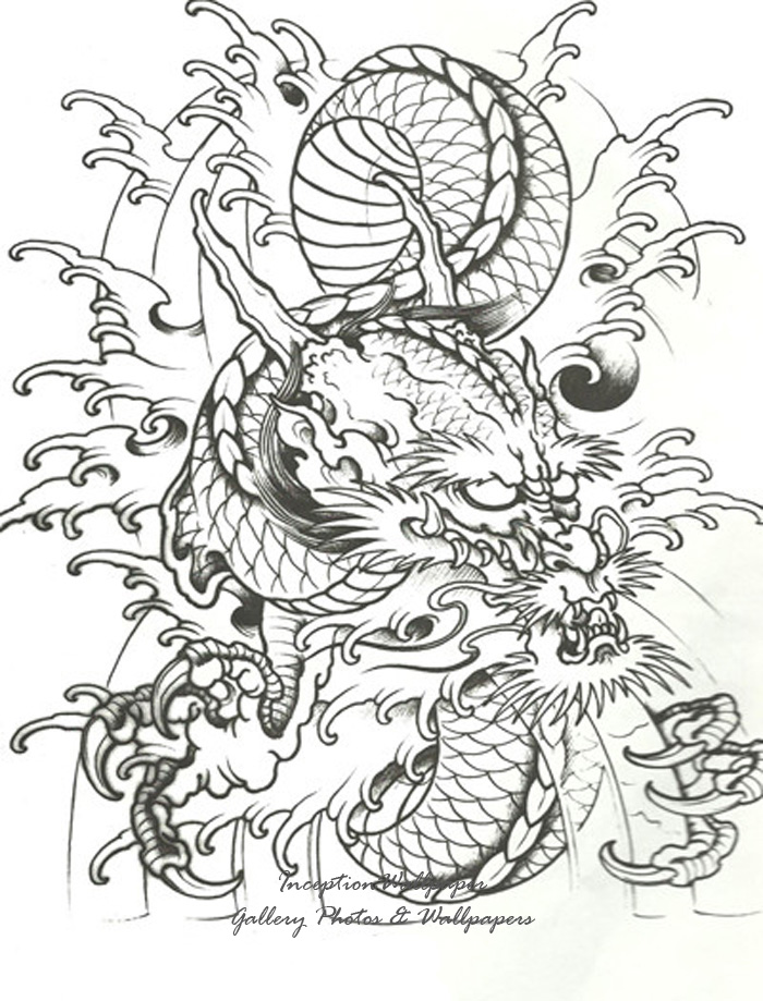 More Tribal Tattoo Designs On White Background photo - 1