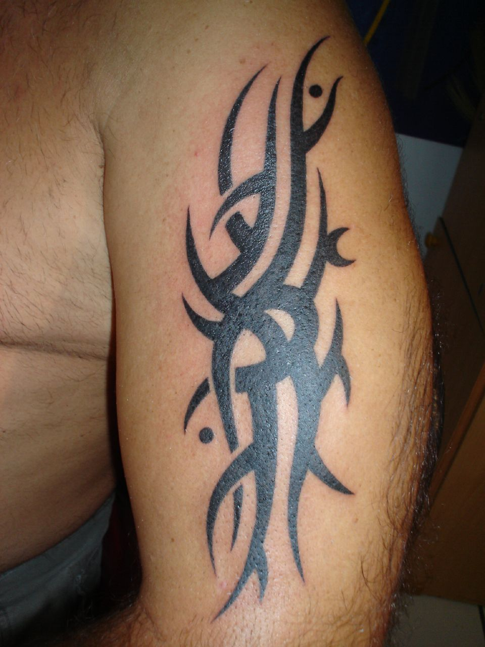Nice Tribal Bat Tattoo Art photo - 3