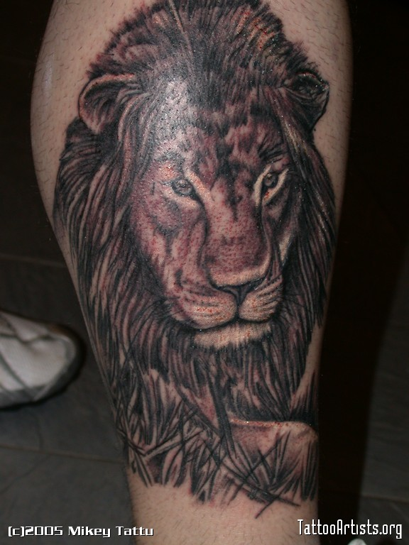 Outstanding Lion Tattoo Design photo - 2