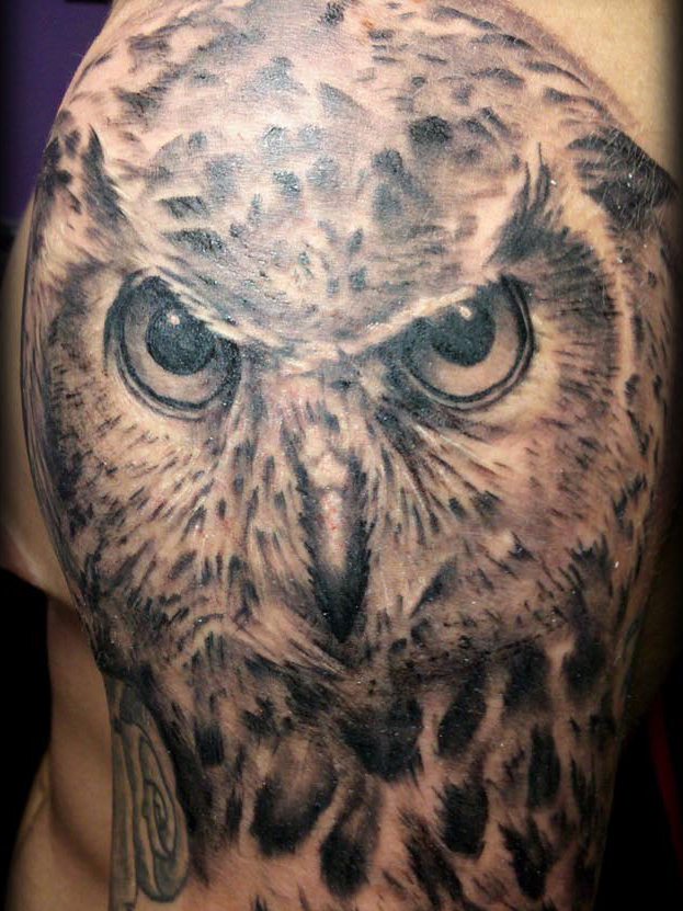 Realistic Owl Tattoo On Shoulder photo - 1