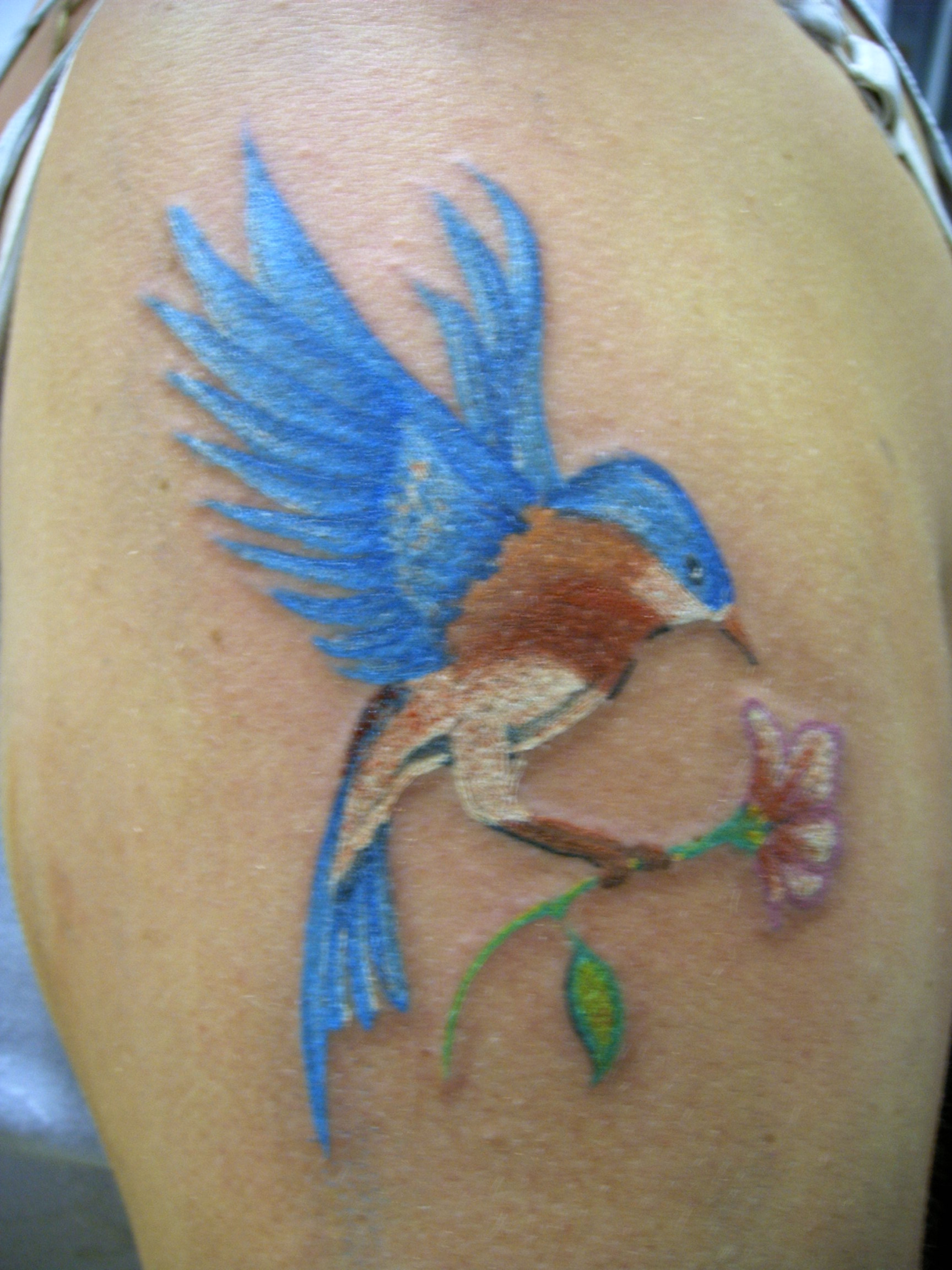 Tribal Hummingbird Tattoo photo - 3