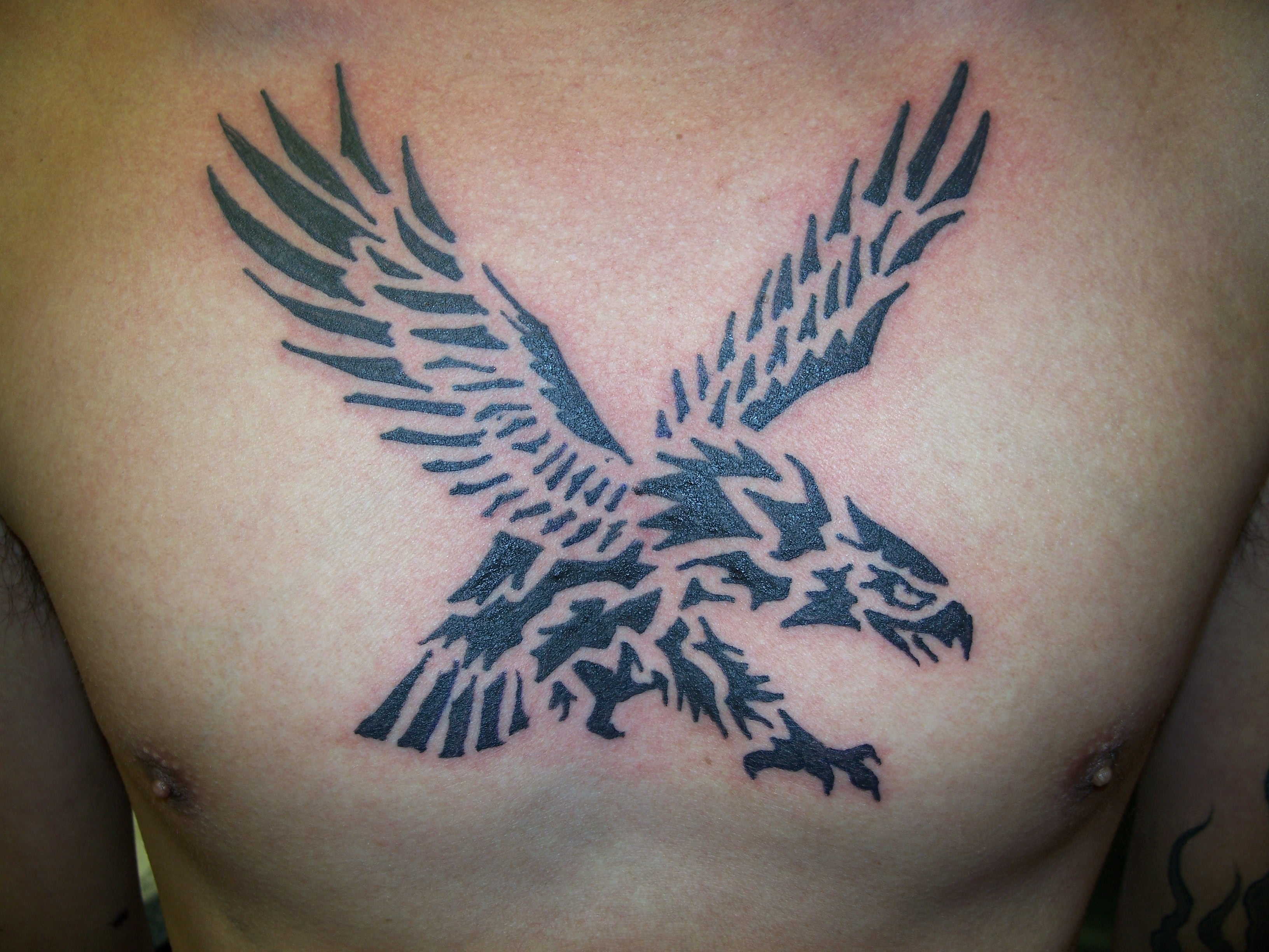 Tribal Military Eagle Tattoo On Shoulder photo - 2