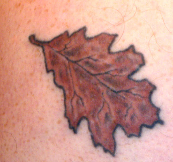 Tribal Oak Leaf Tattoo Design photo - 3