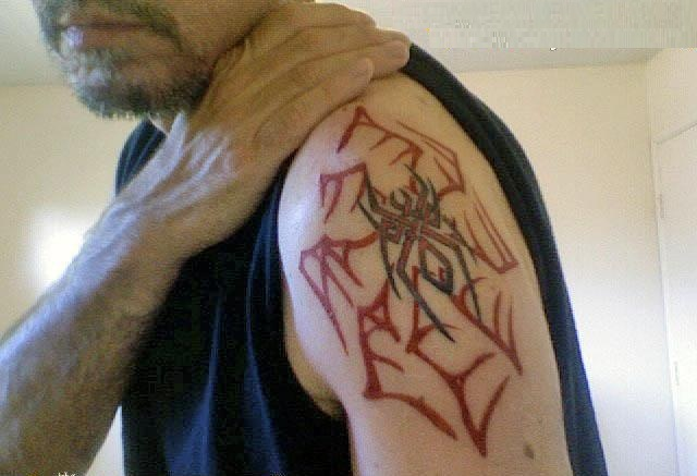 Tribal Spider Web Tattoo On Biceps photo - 1