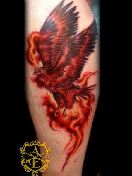truly amazing fire bird phoenix tattoo in 2017 real photo. Black Bedroom Furniture Sets. Home Design Ideas